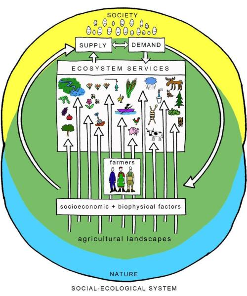 small resolution of the figure illustrates the agricultural landscape as a social ecological system supplying multiple ecosystem services