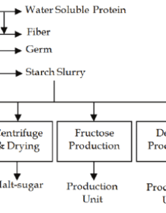 Process flow diagram for  typical corn processing industry also rh researchgate