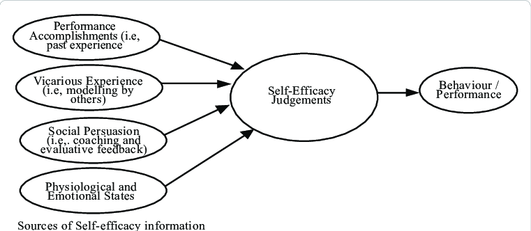 Diagram to explain the Self-efficacy Theory in this study