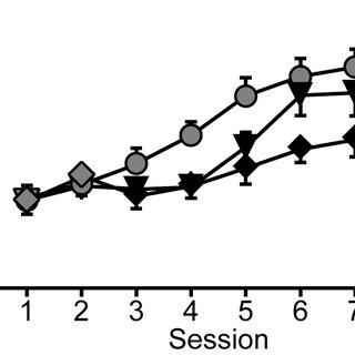 Extended training: Instrumental seeking behavior under