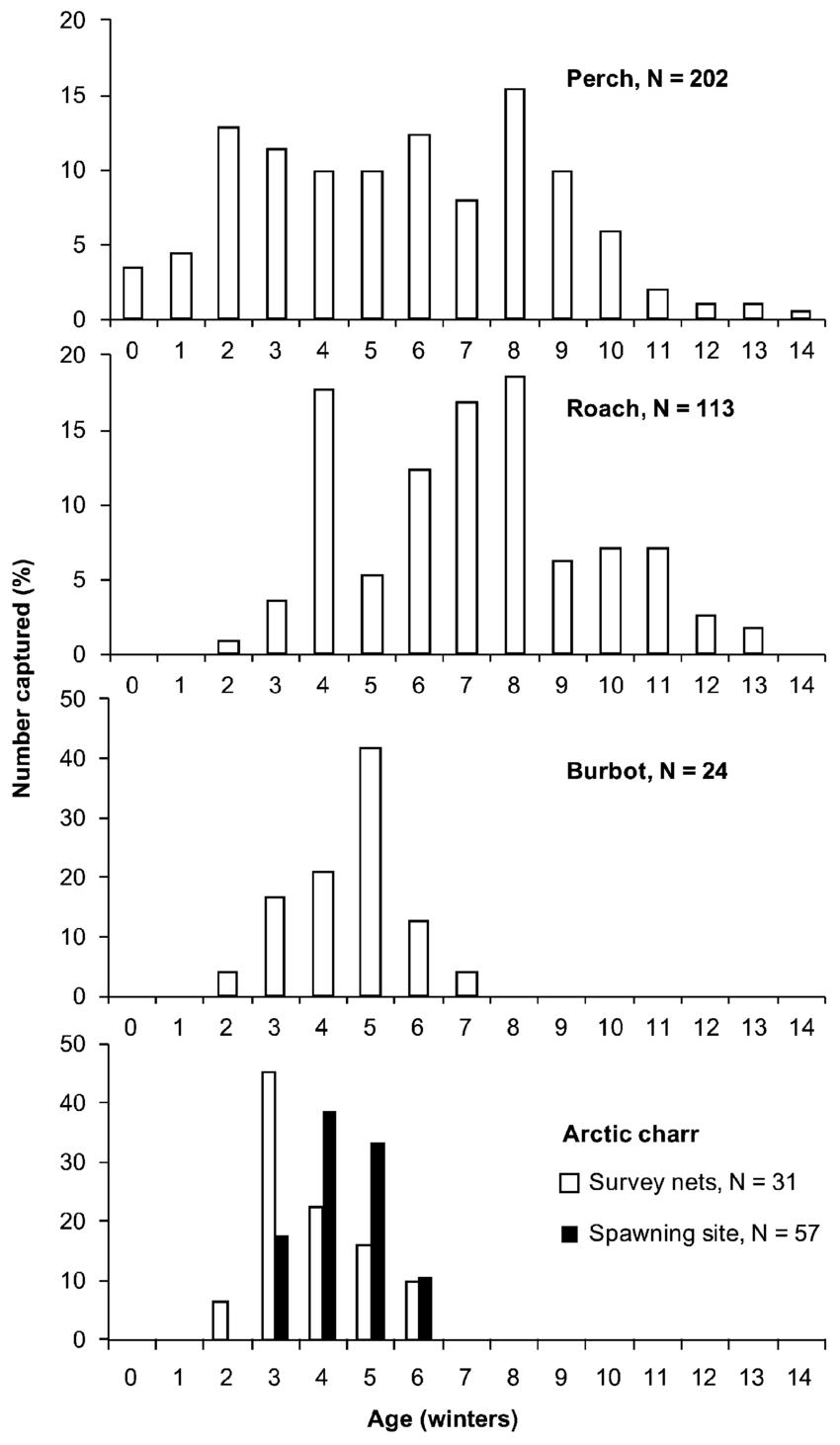 hight resolution of age distribution of perch perca fluviatilis roach rutilus rutilus burbot