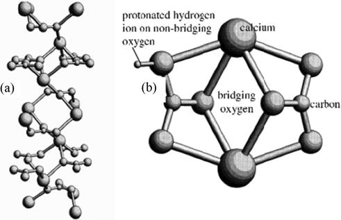 (a) Lattice molecular of calcium carbonate and (b) surface