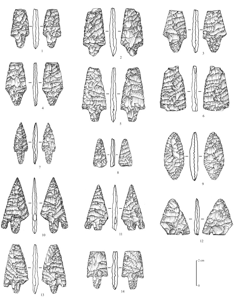 1–8: flat bifacial tanged projectile points with