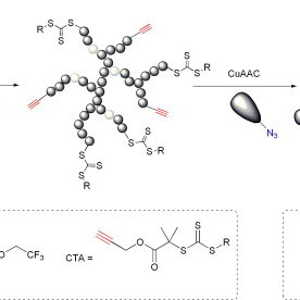 Synthesis of hyperbranched glycopolymers by RAFT using an