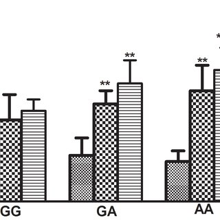 Characterization of nitrate tachyphylaxis by blood