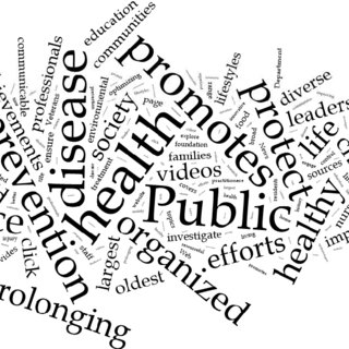 (PDF) Worldwide hot topics in public health based on