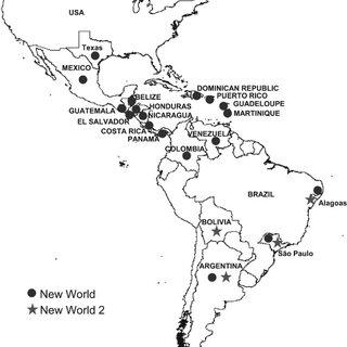 (PDF) Indigenous American species of the Bemisia tabaci
