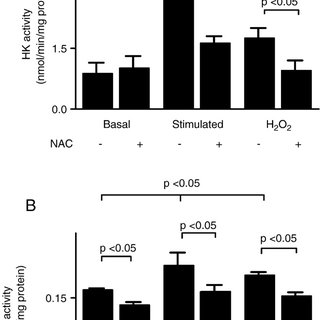 Effects of NAC on the activity of glycolytic enzymes under