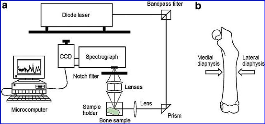 (a) Schematic diagram of the dispersive, near-infrared