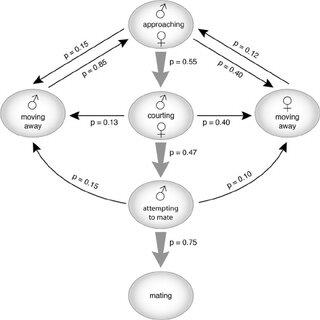(PDF) Mating Behavior of Cnephasia jactatana (Lepidoptera