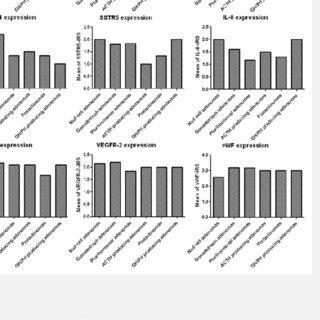 (PDF) Expression of somatostatin receptors, angiogenesis