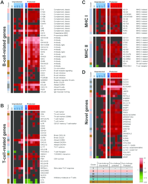 small resolution of pulmonary gene expression profiles of genes related to t cells download scientific diagram