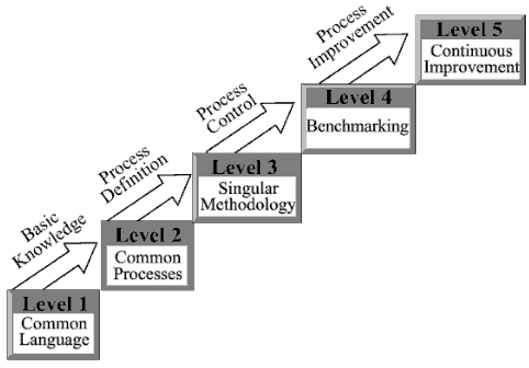 Kerzner's Project Management Maturity Model (K-PMMM