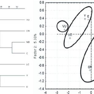 (PDF) Population genetics of the grasshopper Melanoplus