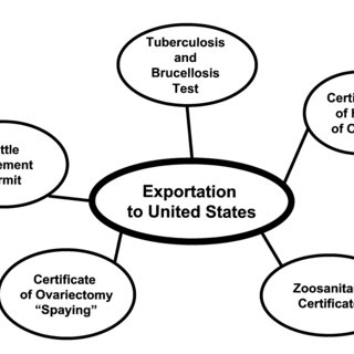 (PDF) Procedures for Exporting Cattle from Chihuahua