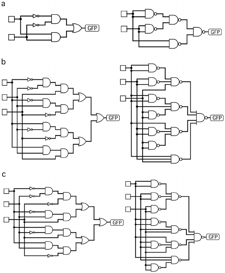 Examples of standard engineering designs of three cases