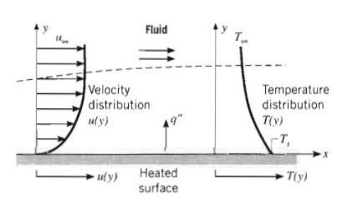 3. Boundary layer development in convection heat transfer