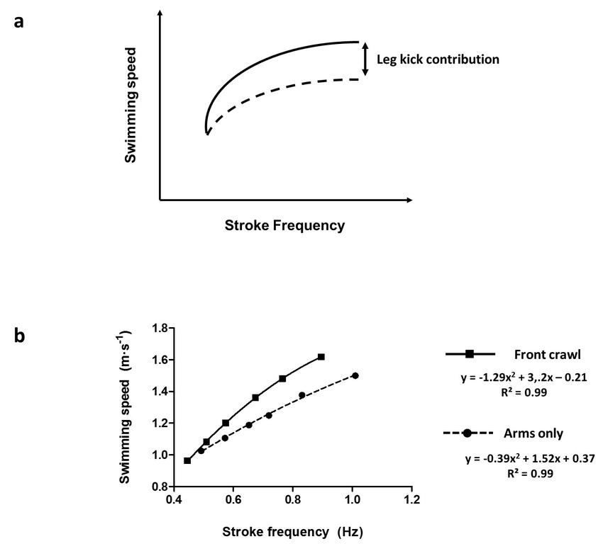 Stroke frequency (SF) vs. speed (v) relationship