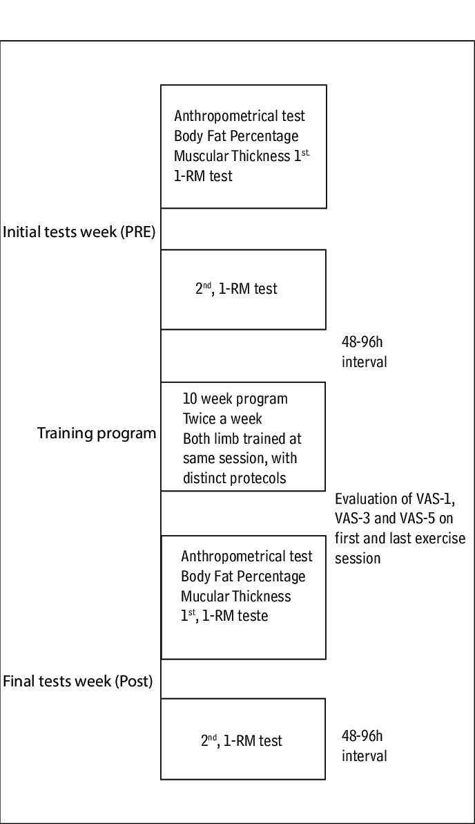 hight resolution of analogical pain scale adapted by hernandez 18