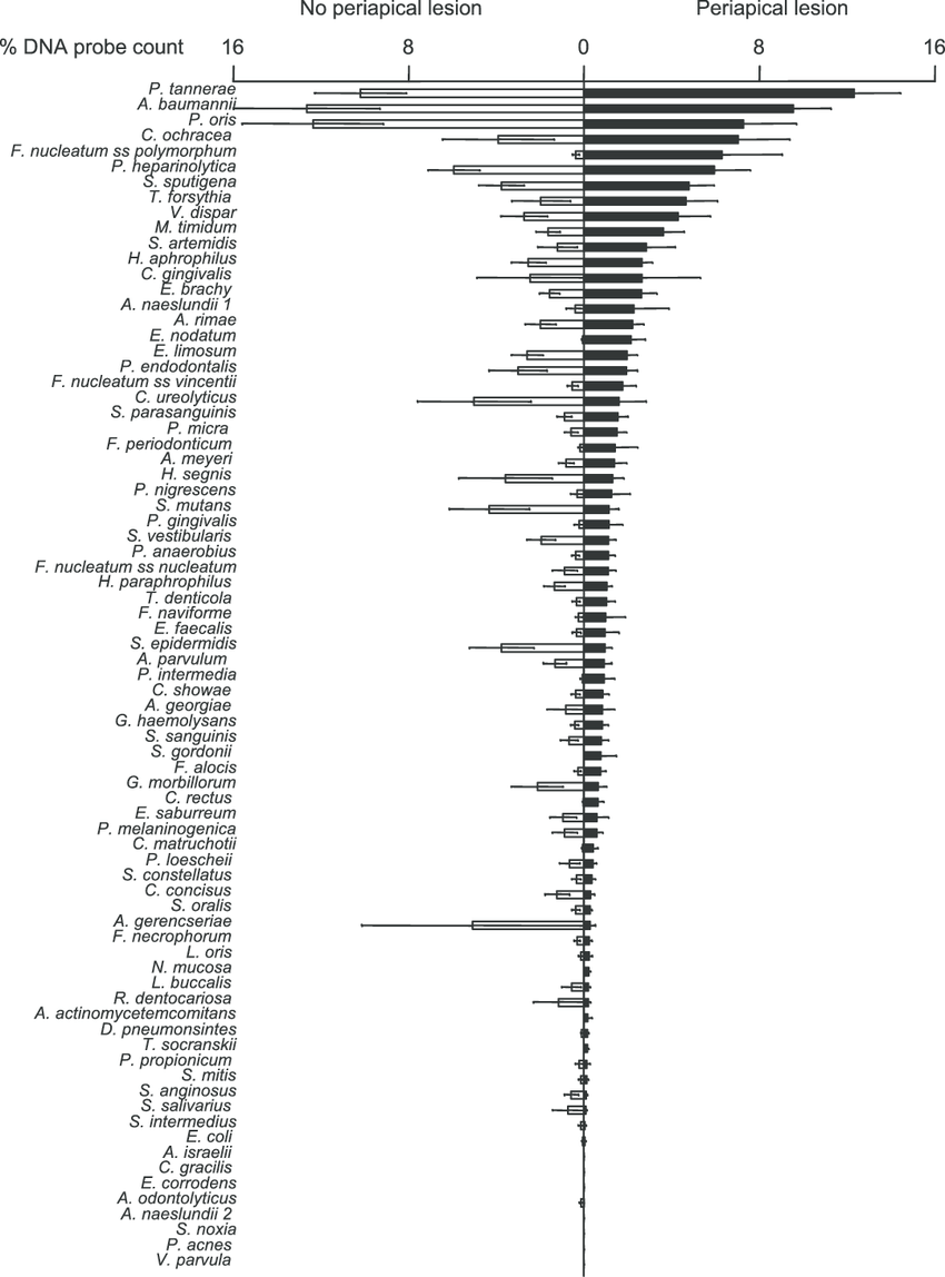 Bilateral bar chart of the mean percentages of the DNA