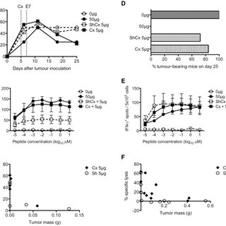(A) Total thymus cellularity and spleen T cell numbers in