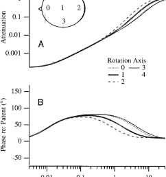 sensitivity to eccentricity of rotation the cupular attenuation a and phase shift  [ 850 x 1042 Pixel ]