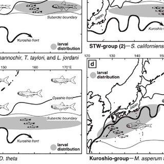 (PDF) Micronekton of the North Pacific