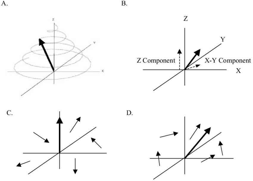 Behavior of the net magnetization vector (large arrow