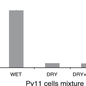 Schematic protocol for dry-preservation of Pv11 cells