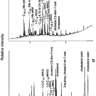 Reconstructed total ion chromatogram from the GC-MS of the