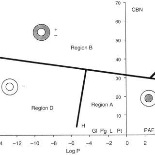 (PDF) Permeability of the mouse zona pellucida: A