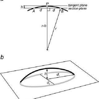Dupin's indicatrix. (a) Elliptical type indicating