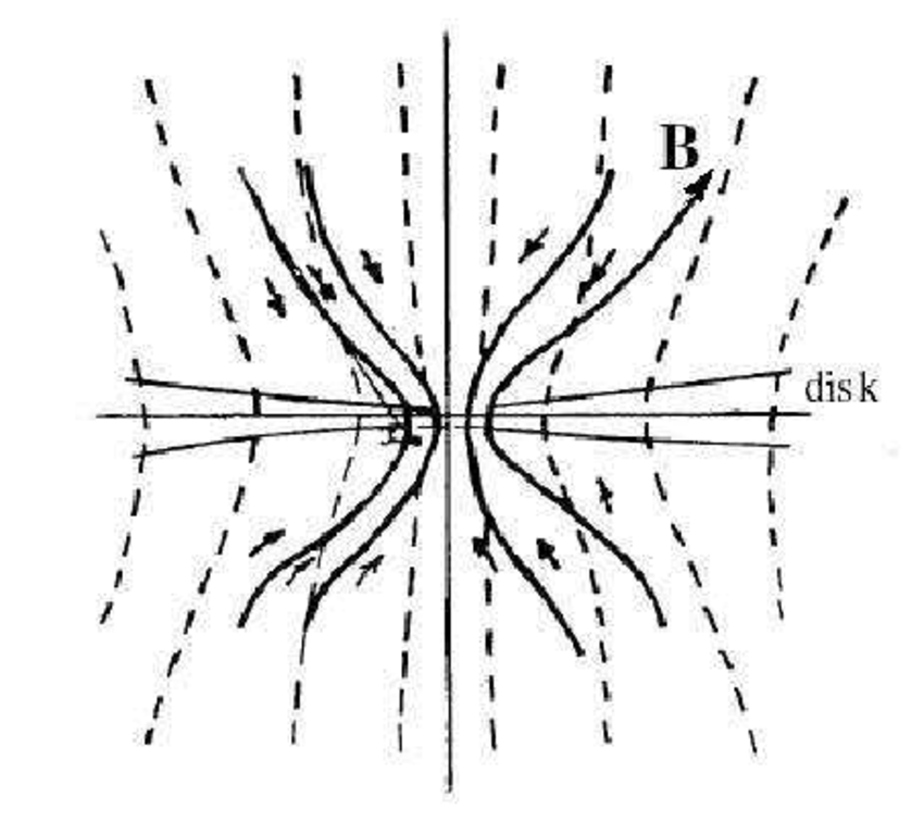 Sketch of the poloidal magnetic field threading an