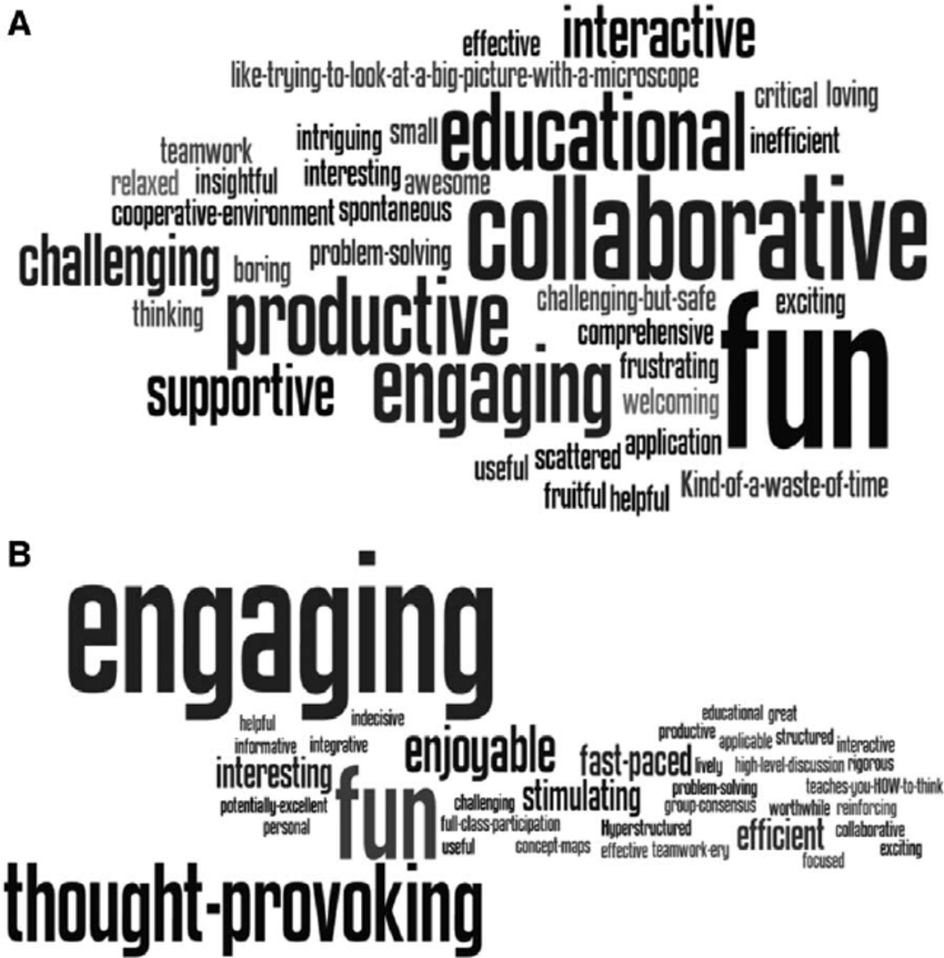 Word clouds representing first-year students' free-text