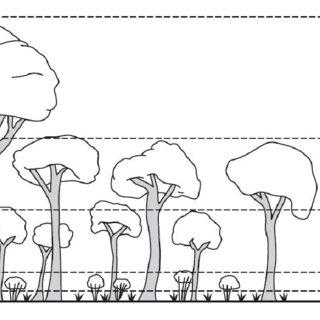 (PDF) Explanatory notes for the Vegetation field handbook