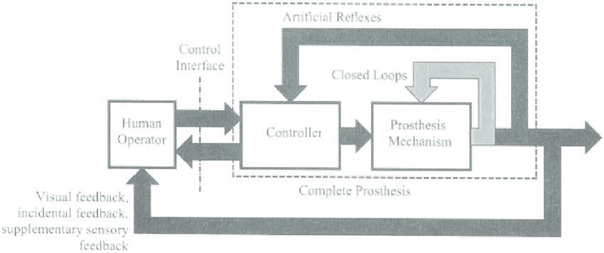 Standard Handbook of Biomedical Engineering & Design (PDF