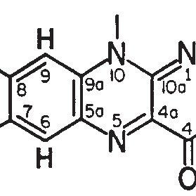 The structure of the isoalloxazine ring of flavin adenine