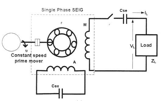 Self-excited single-phase induction generator with