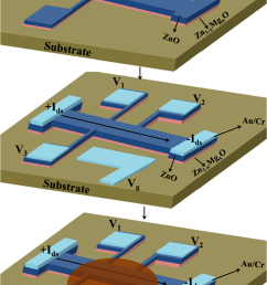 a schematic diagram of edl fets fabricated on a thin film of zno grown [ 850 x 1342 Pixel ]