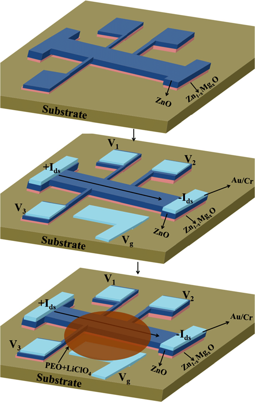 hight resolution of a schematic diagram of edl fets fabricated on a thin film of zno grown