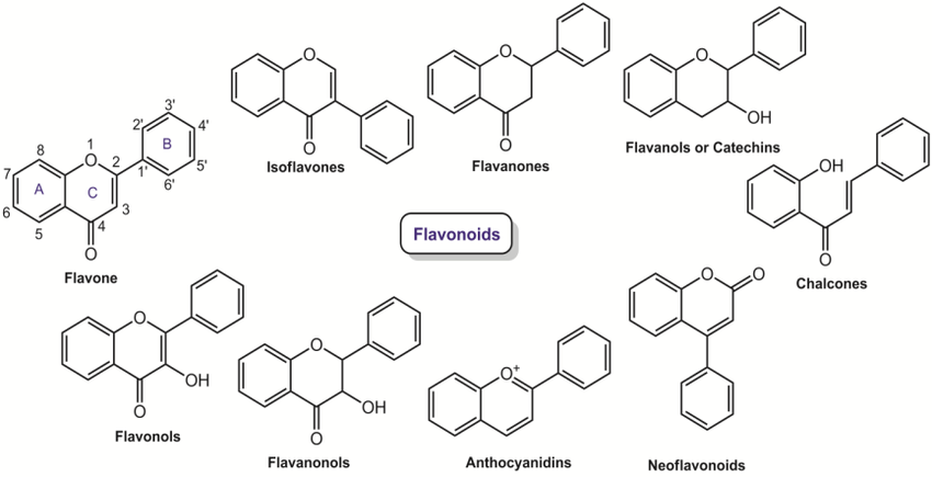 Classification of flavonoids and their basic chemical