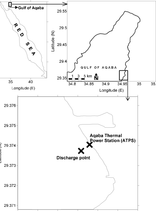 small resolution of map of the study site in front of aqaba thermal power station atps in