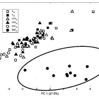 (PDF) Metabolomics of cerebrospinal fluid reveals changes