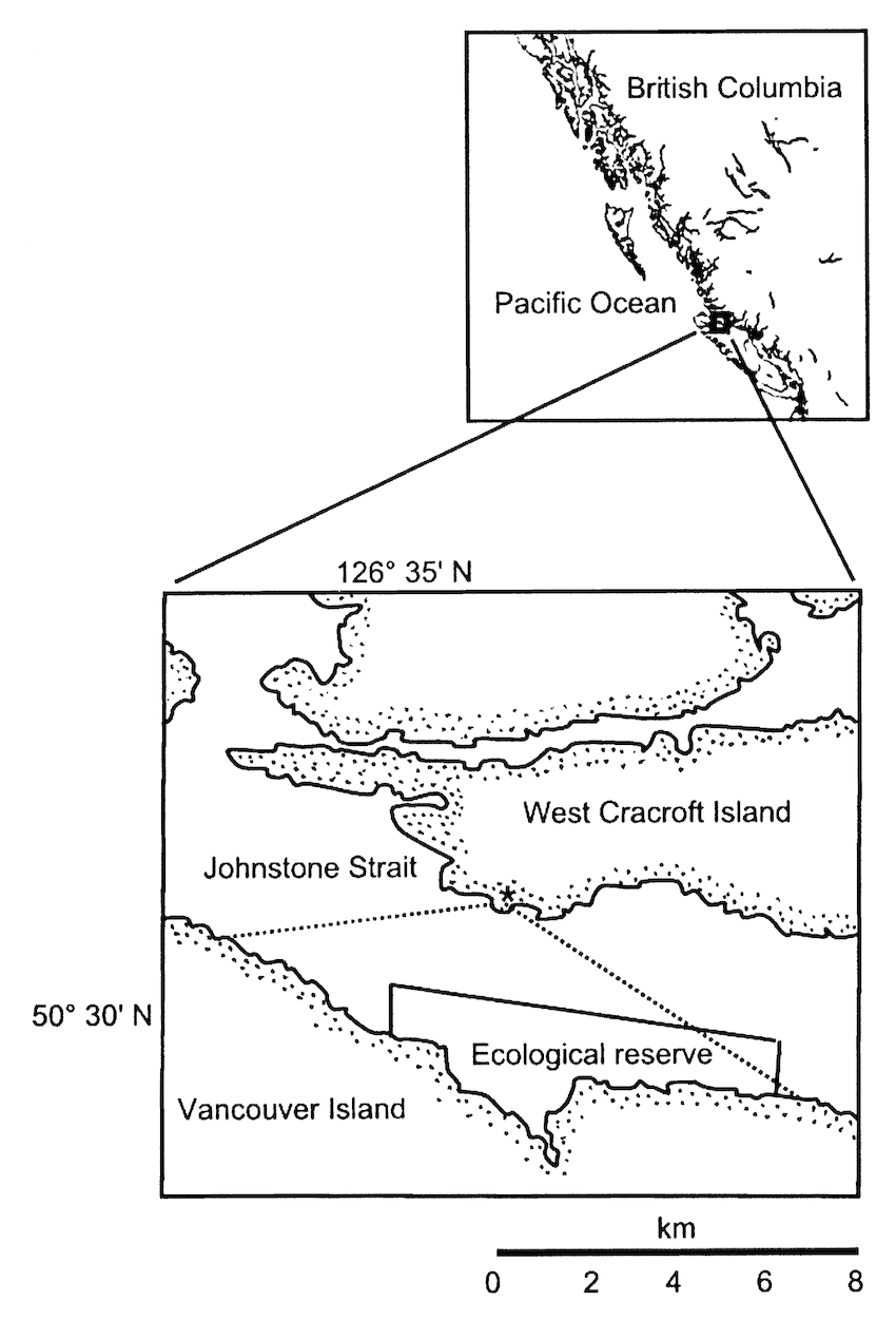Study area in Johnstone Strait, BC, Canada, showing lines