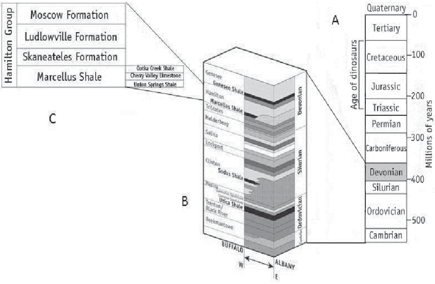 4. (A) Geological time scale, with Devonian Period shaded