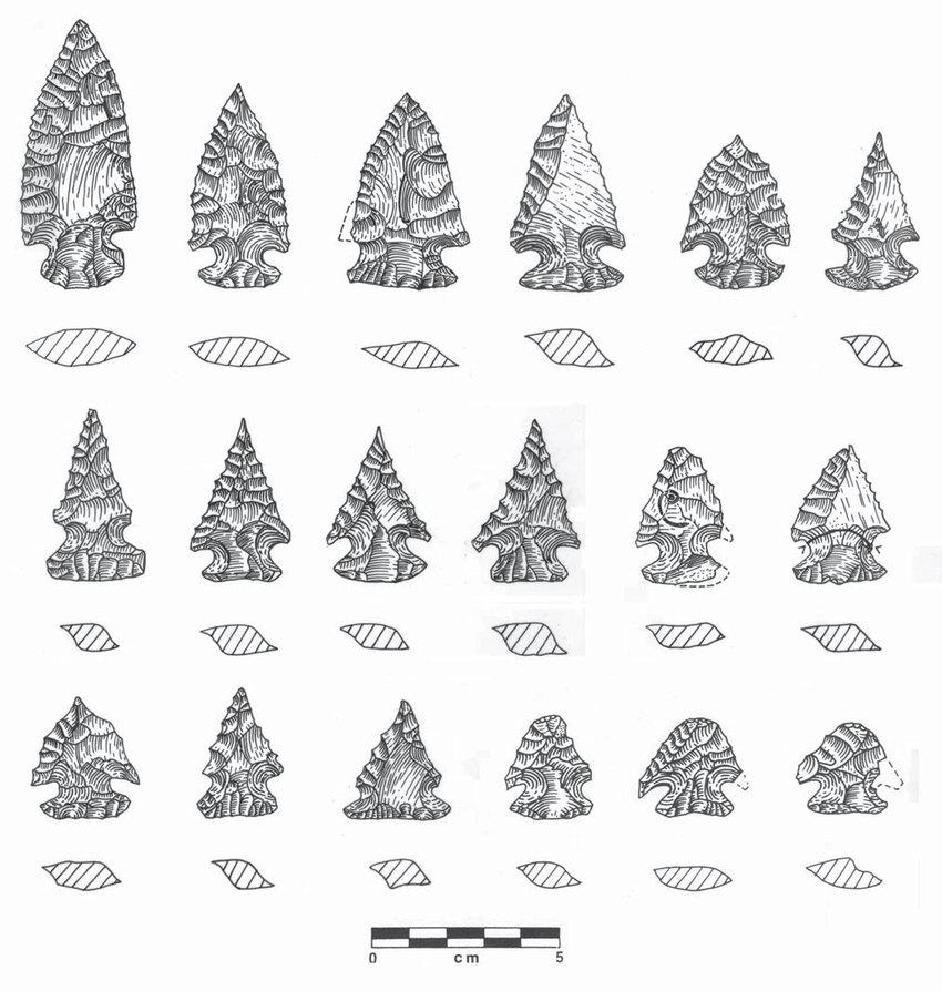 Examples of the range of variation in Bolen hafted bifaces