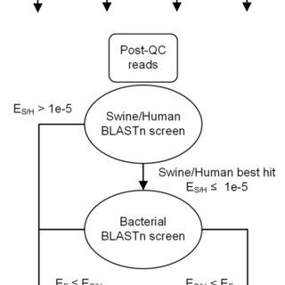 A. Domain level; B. Phylum level. Each pie chart