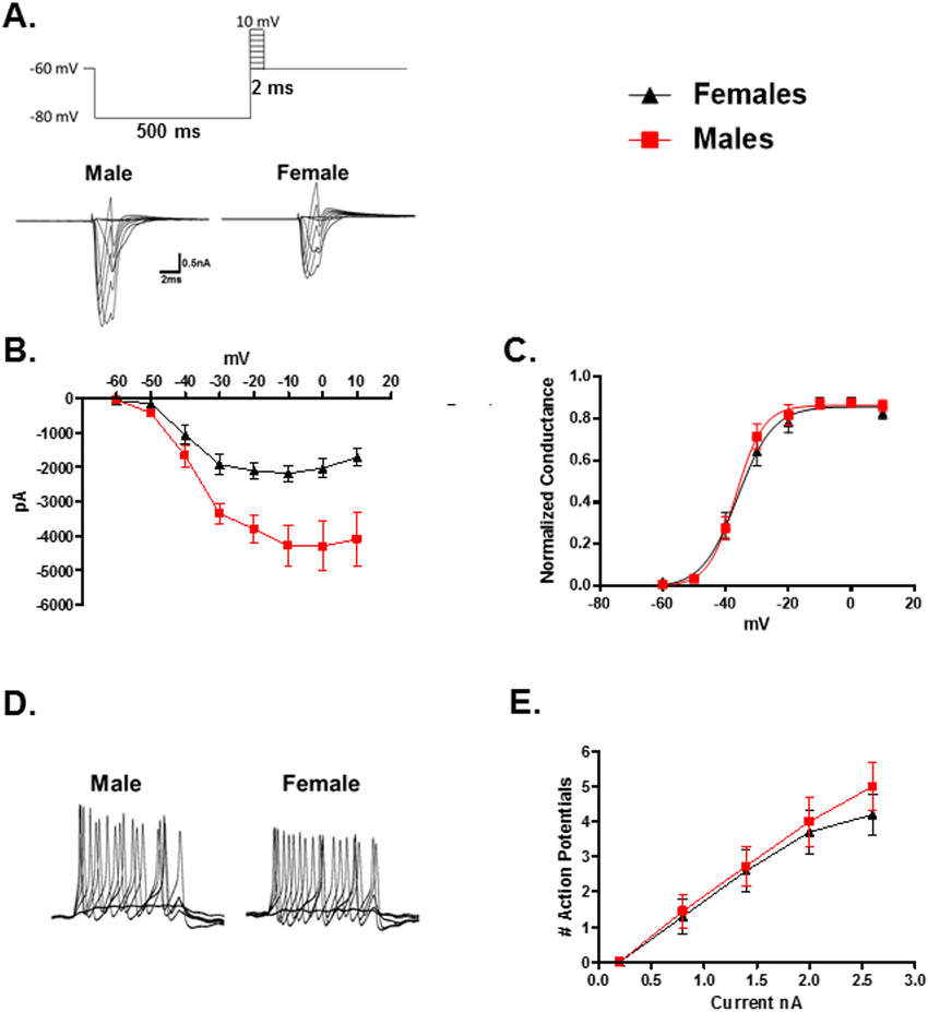 hight resolution of comparison of voltage gated sodium channels in male and female trpm8 expressing trg neurons