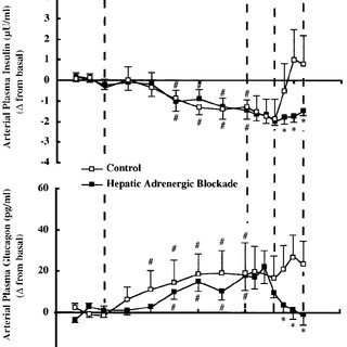 Heart rates during the basal, exercise, recovery, and