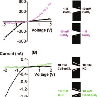 Schematic of an ionic diode with local charge inversion induced by the... | Download Scientific Diagram
